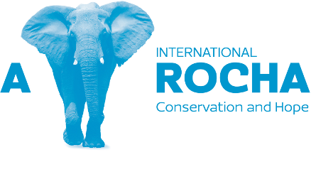 A Rocha International logo