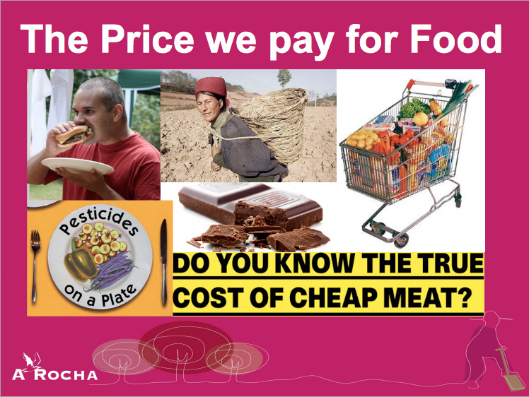 The price we pay for food